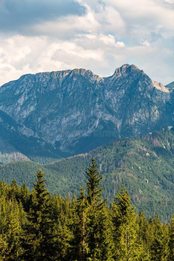 Giewont góra, Inspiruje góra krajobraz w lecie Tatras zdjęcia stock