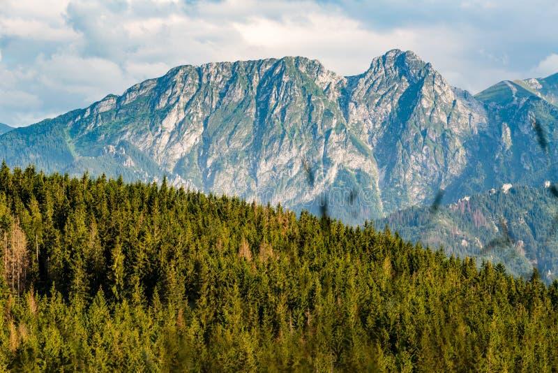 Giewont góra, Inspiruje góra krajobraz w lecie Tatras zdjęcie royalty free