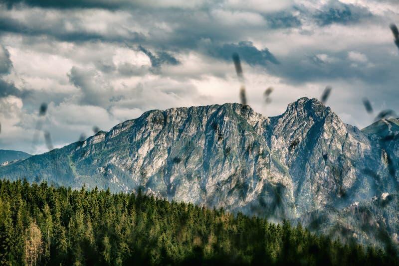 Giewont góra, Inspiruje góra krajobraz w lecie Tatras obraz royalty free