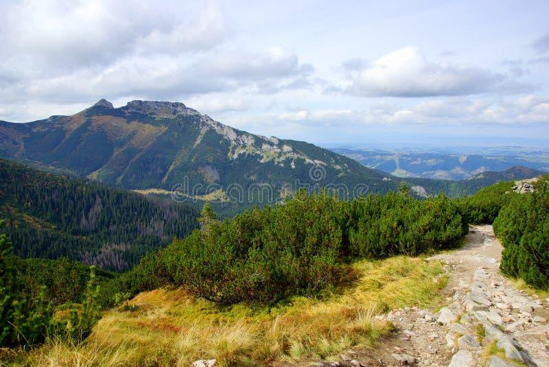 Giewont, montaña del od Tatras del paisaje en Polonia foto de archivo