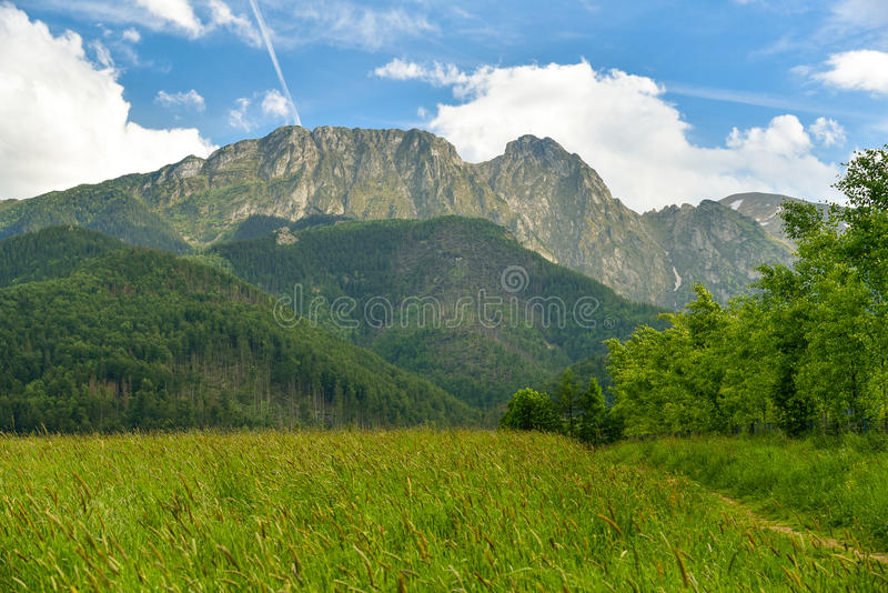 Landscape, meadow, Giewont mountain, Zakopane, Poland. Peak of Giewont mountain, the Tatra mountains range in Zakopane, Poland royalty free stock photography