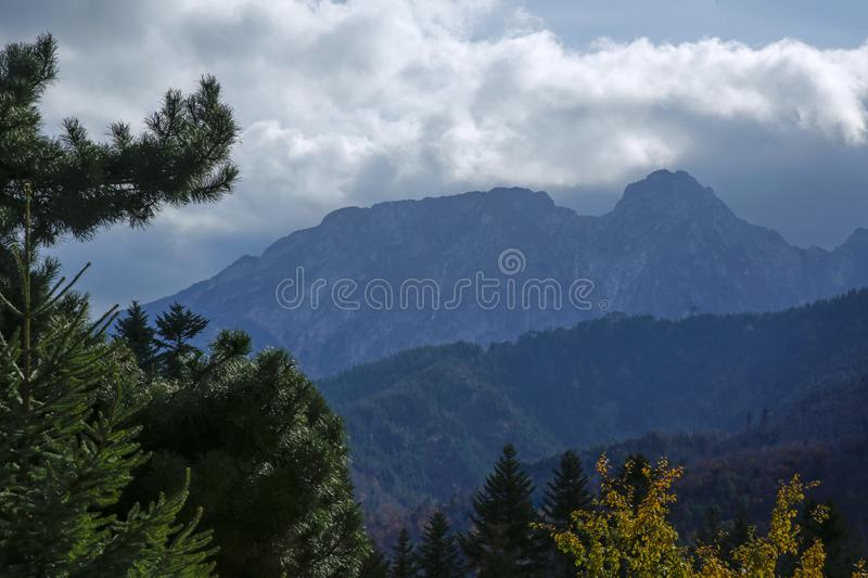Giewont peak in the Tatra Mountains in Zakopane, Poland. Behind spruces in the autumn scenery royalty free stock image