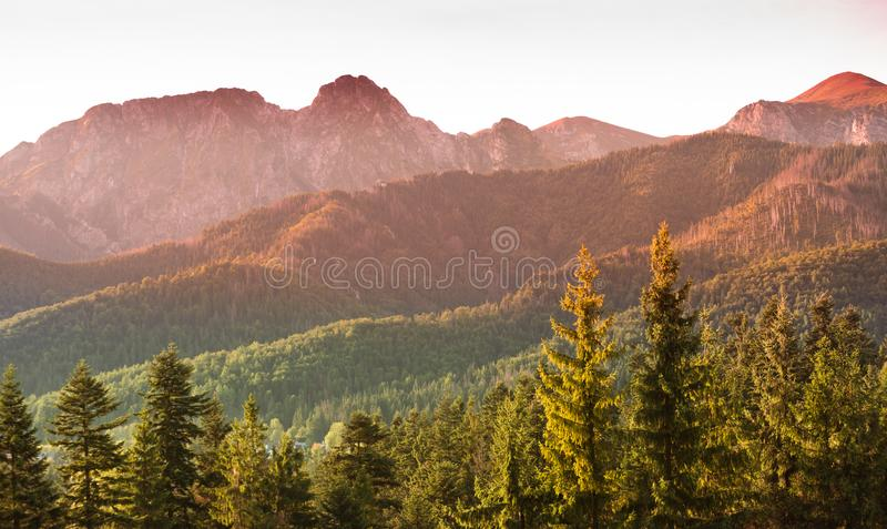Giewont and Tatra Mountains panorama - autumn sunrise over rocky summits and pine forest hills stock photography