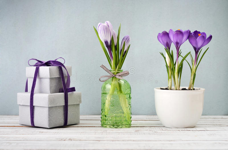 Gift boxes and crocus stock photography