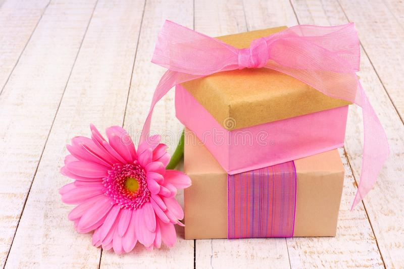 Gift boxes with pink daisy flower on white wood stock photo