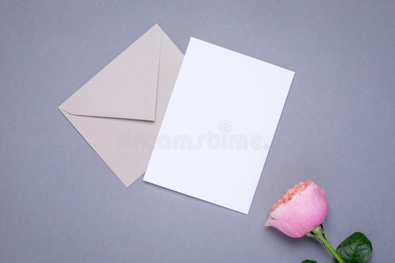 Gift card and envelope with pink rose on gray background stock photos