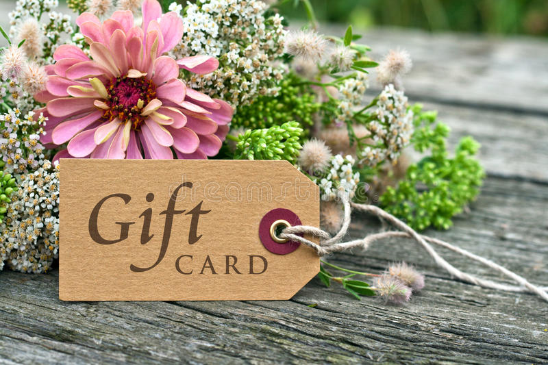 Gift card. Pink flowers and gift card royalty free stock images