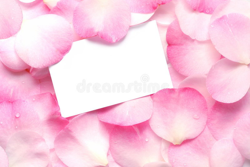 Gift Card on Pink Petals stock photo
