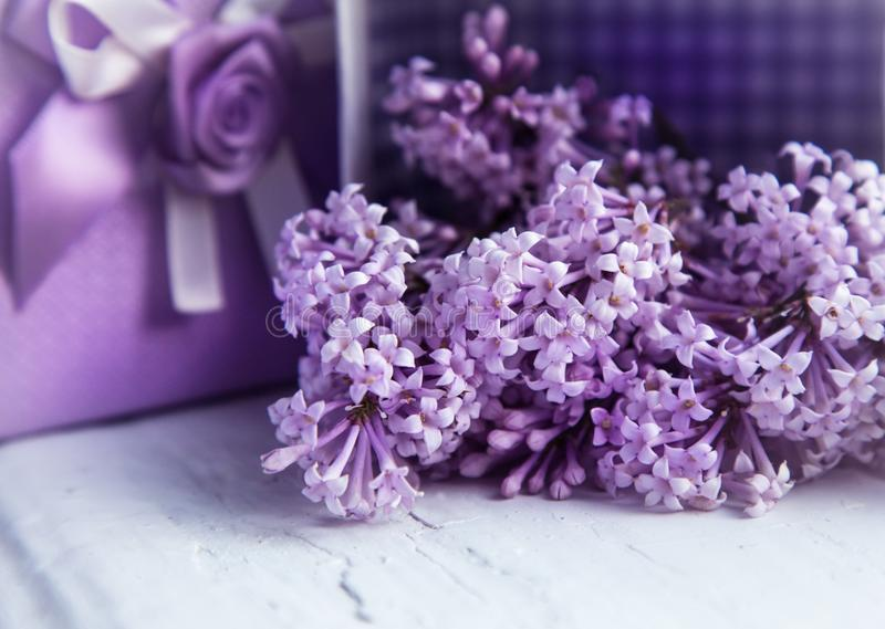 Gift design in lilac color. Box with ribbon and blooming lilac. royalty free stock photography