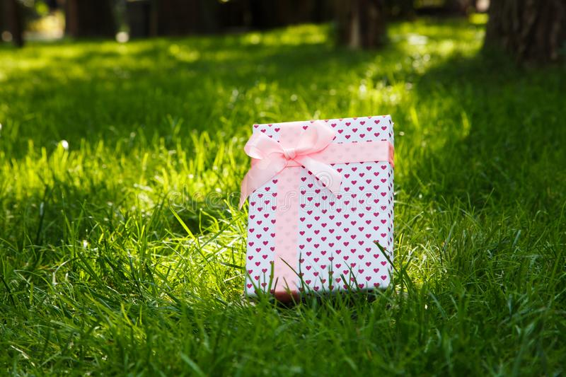 Gift on green grass with a pink bow royalty free stock images