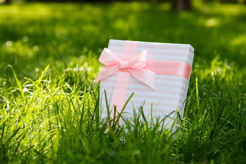 Gift on green grass with a pink bow royalty free stock image