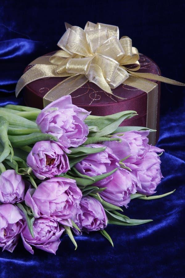 Gift. Heden. Tulpen, doos. stock fotografie
