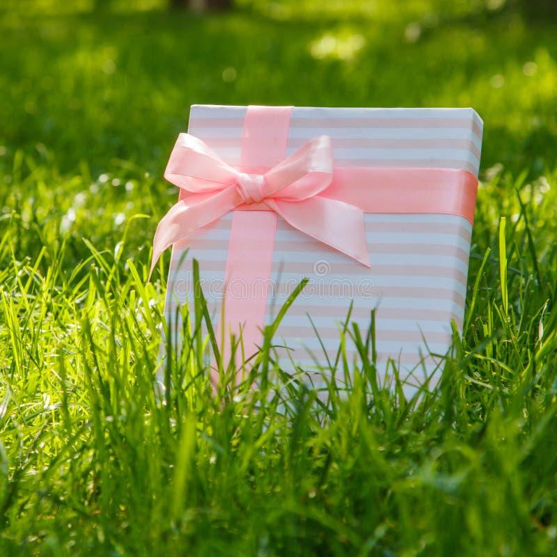 Gift op groen gras met een roze boog stock afbeelding