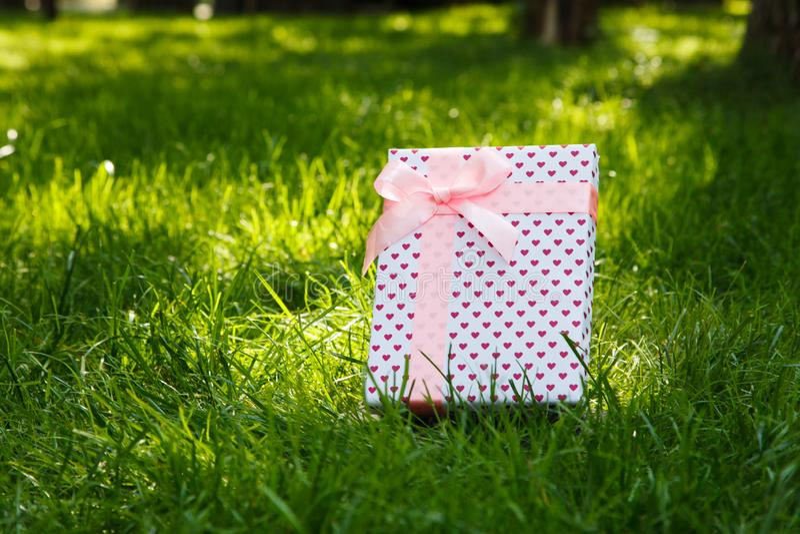 Gift op groen gras met een roze boog stock fotografie