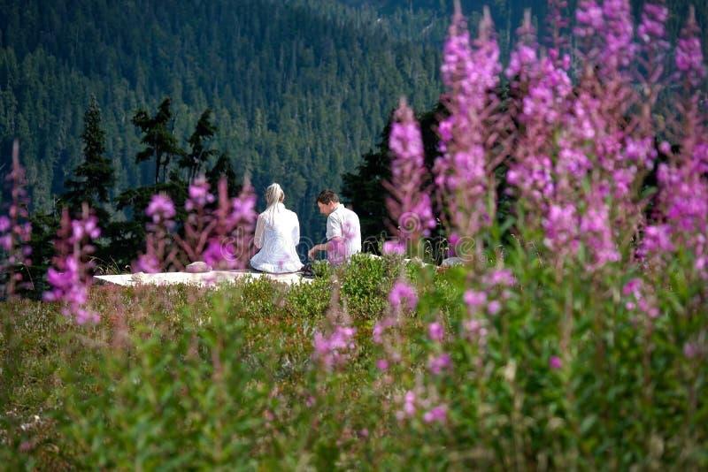 Gift par på semestersammanträde bland vildblommor som har lunch på varm sommardag royaltyfri fotografi