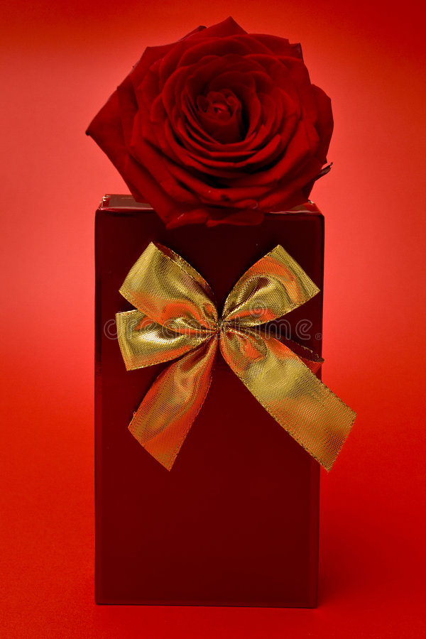 Gift And Red Rose Stock Image