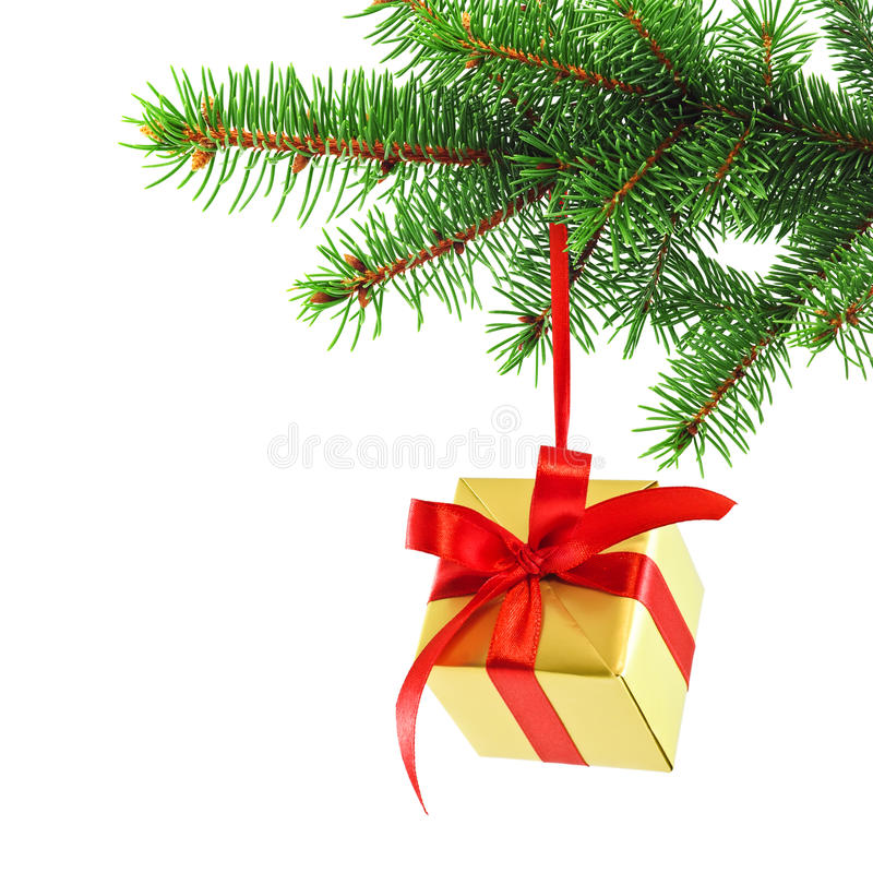 Download Gift Wrapped Present On A Spruce Brunch Stock Photo - Image: 18930724