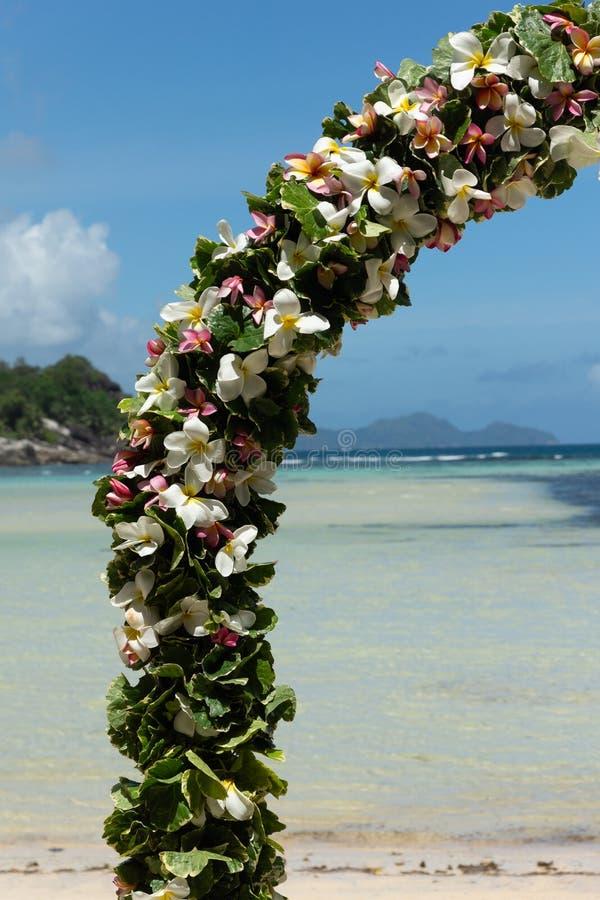 Gifta sig garnering på stranden på Mahe Island, Seychellerna arkivbild
