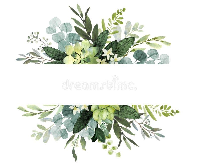 Gifta sig grönskaramen Vattenfärgillustration med eukalyptuns ris vektor illustrationer