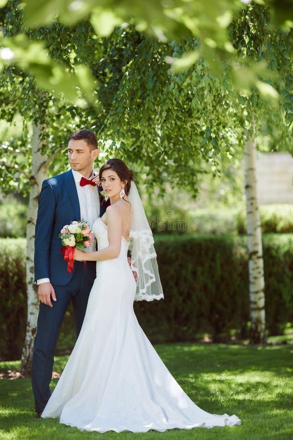 Gifta sig par på naturen royaltyfri bild