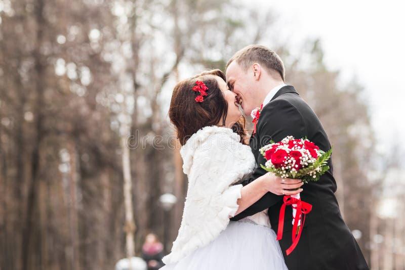 Gifta sig par på vinterdagen fotografering för bildbyråer