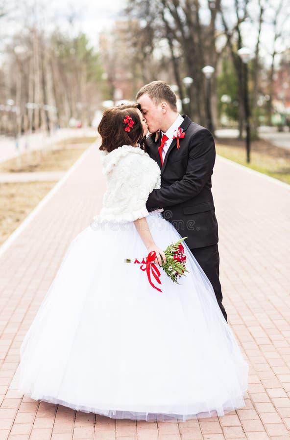 Gifta sig par på vinterdagen arkivbild