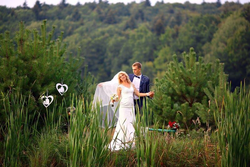 Gifta sig par som är förälskade på bröllopdag rymmer brudgummen, bruden i hennes armar nära den härliga sjön i selektiv fokus för royaltyfria bilder