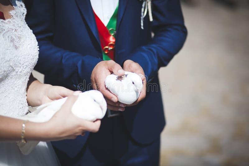 Gifta sig parhanden dök royaltyfri bild
