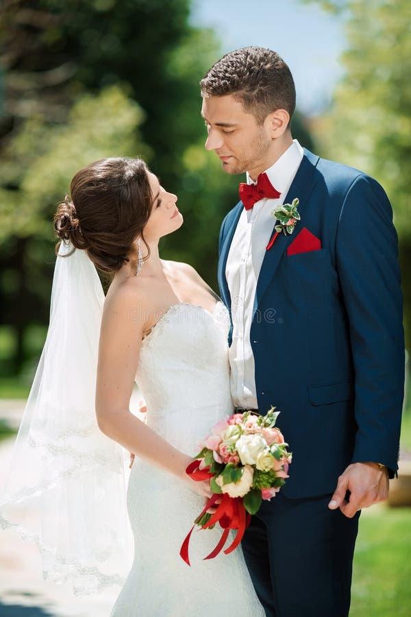 Gifta sig parståenden på naturen royaltyfria foton