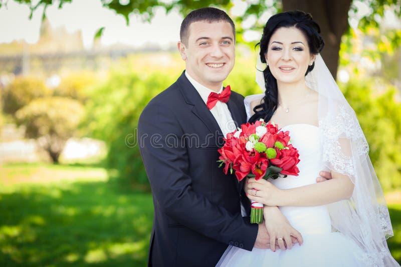 Gifta sig röda detaljer fotografering för bildbyråer