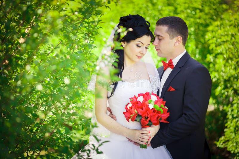 Gifta sig röda detaljer royaltyfri foto