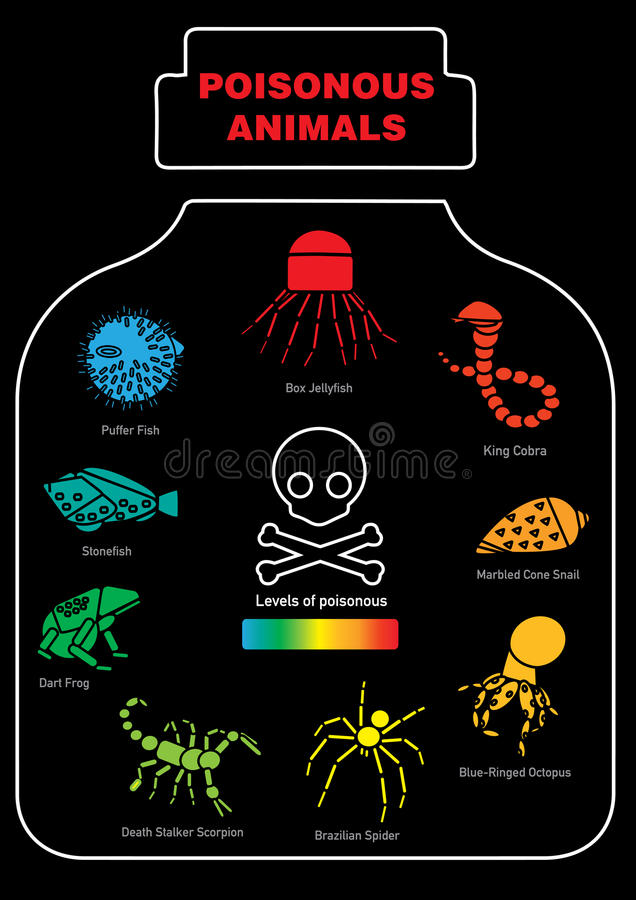 Giftig dierlijk infographic pictogram royalty-vrije stock foto's