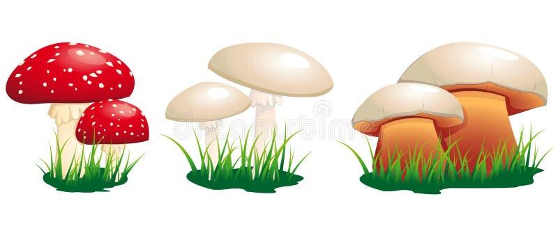 Giftiga champinjoner vektor illustrationer