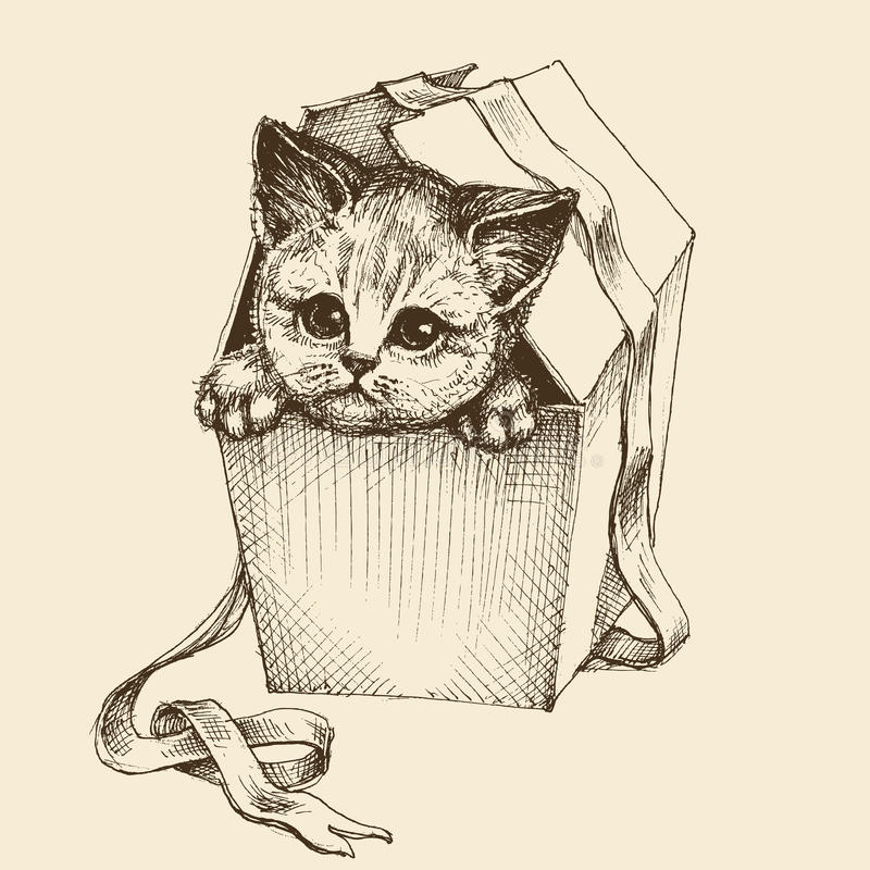 Gifting en kattillustration royaltyfri illustrationer