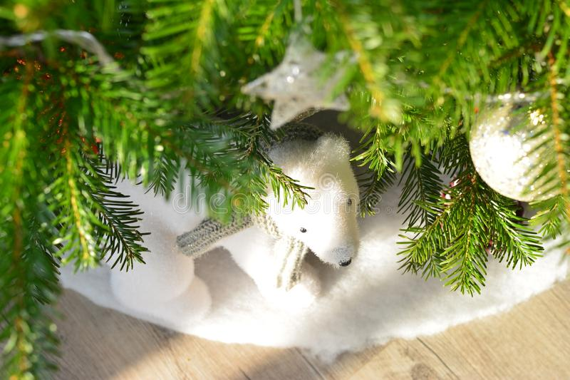 Gifts under the tree for Christmas day. Gifts bear under the tree for Christmas day stock images