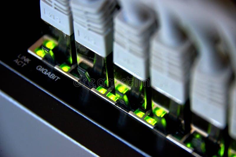 gigabit ethernet σύνδεση στοκ φωτογραφία με δικαίωμα ελεύθερης χρήσης