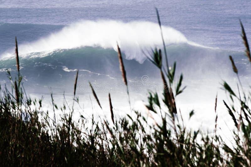 Gigant fala w Portugalia zdjęcia stock