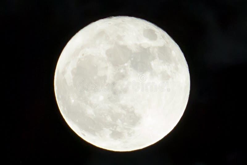 Gigant, jaskrawa biała księżyc w jasnym czarnym niebie obrazy royalty free