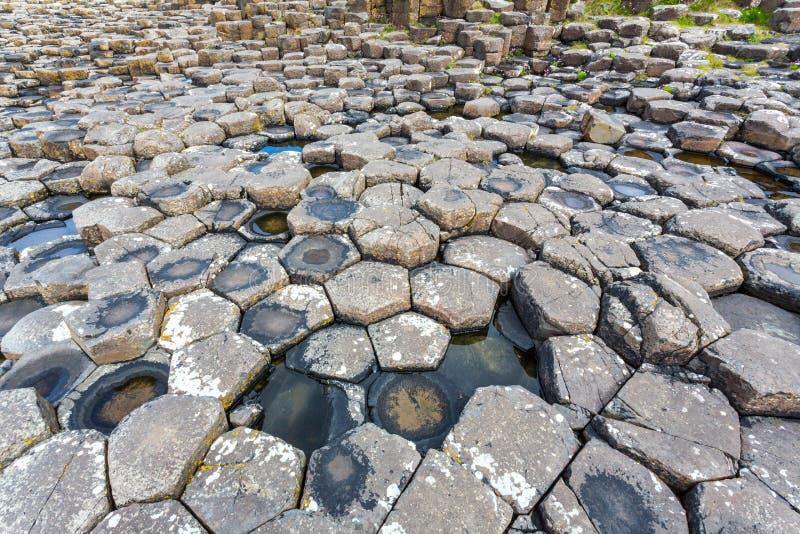 Giganta drogi na grobli, N Irlandia obrazy stock