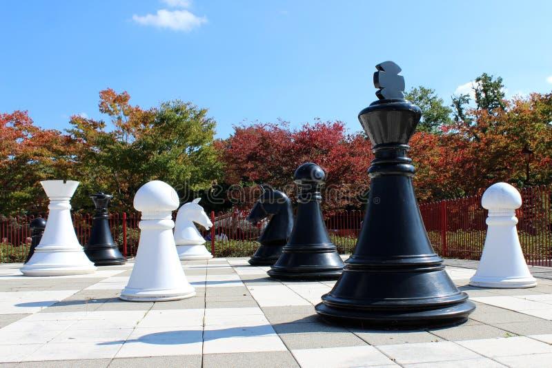 Giganta zmielony szachy fotografia stock