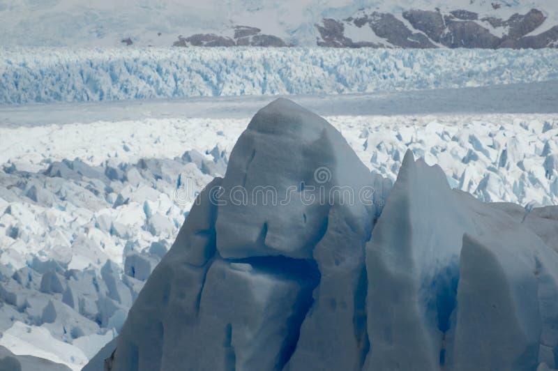 Gigante de hielo en glaciar, Patagonia arkivbilder