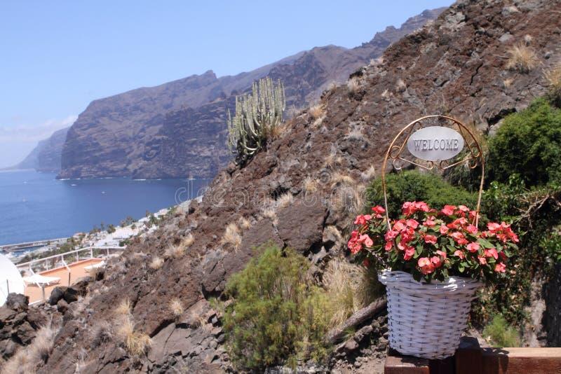 gigantes los Tenerife fotografia stock
