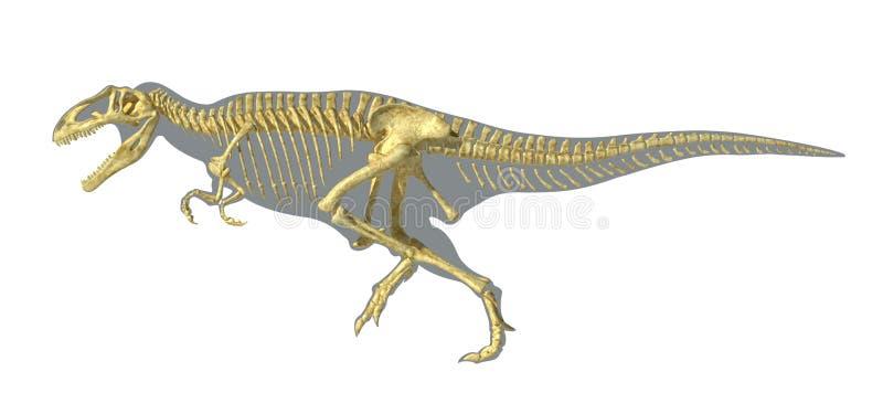 Gigantosaurus dinosaurus充分的照片拟真的骨骼,在身体sihouette。 皇族释放例证