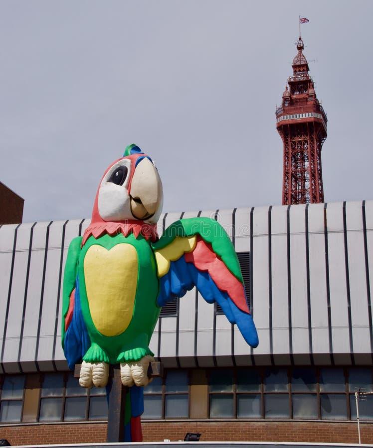 Gigantyczna papuga i Blackpool wierza zdjęcie stock
