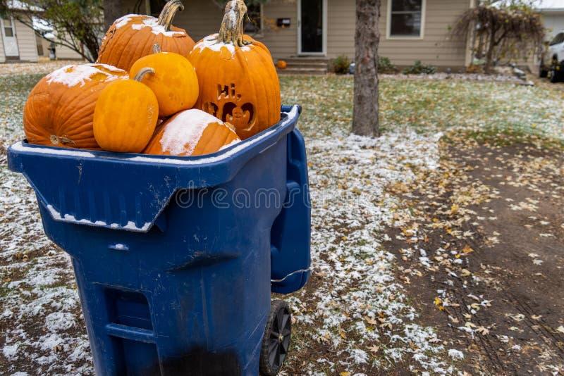 Gigantyczne banie siedzi w grata śmietniku czekać na śmieciarskiego pickup obraz stock