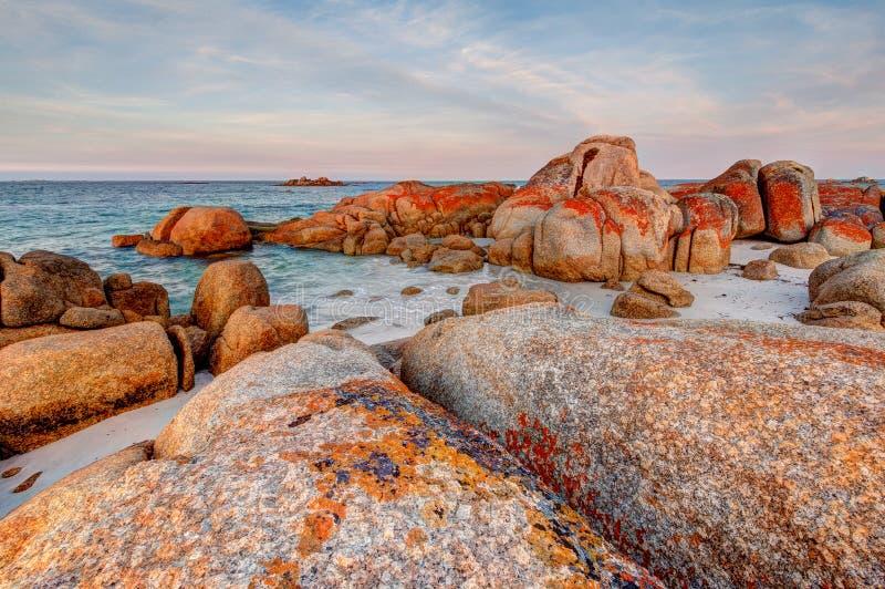 Gigantyczni granit skały głazy zakrywający w pomarańczowym i czerwonym liszaju przy zatoką ogienie w Tasmania, Australia obrazy royalty free