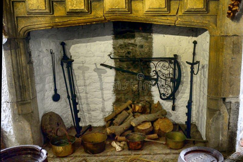 Gigantyczny łoś, Bunratty, Irlandia obrazy royalty free