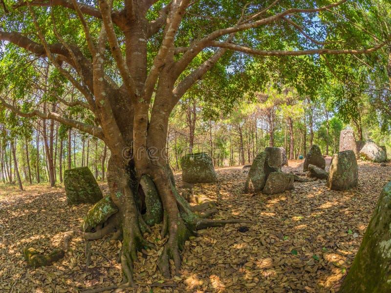 Gigantyczny Żelaznego wieka kamień zgrzyta w lesistej haliźnie Xiangkhoang plateau, zdjęcie stock