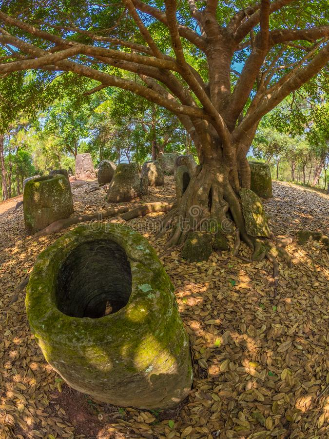 Gigantyczny Żelaznego wieka kamień zgrzyta w lesistej haliźnie Xiangkhoang plateau, fotografia stock