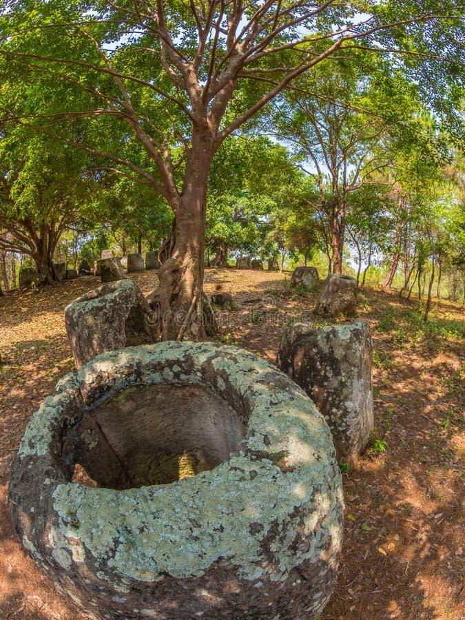 Gigantyczny Żelaznego wieka kamień zgrzyta w lesistej haliźnie Xiangkhoang plateau, obrazy stock